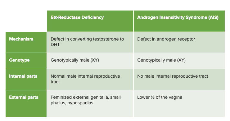 5-alpha-reductase deficiency differential