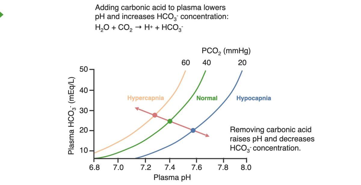 Acid-base diagram