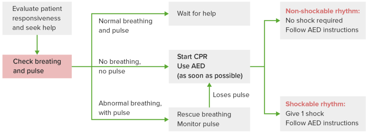 Adult basic life support (BLS)