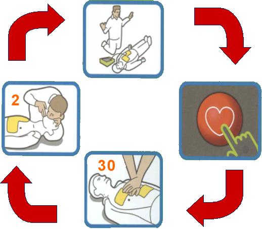 General cardiopulmonary resuscitation (CPR) cycle