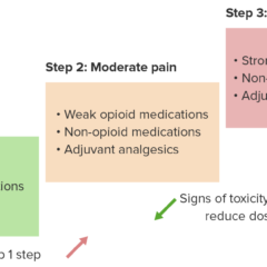 Analgesic ladder for cancer pain diagram with steps
