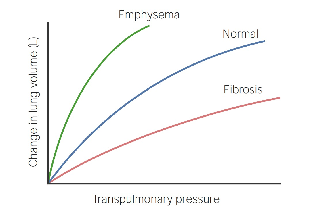 Chart of transpulmonary pressure (x-axis) and change in lung volume in liters (y-axis)