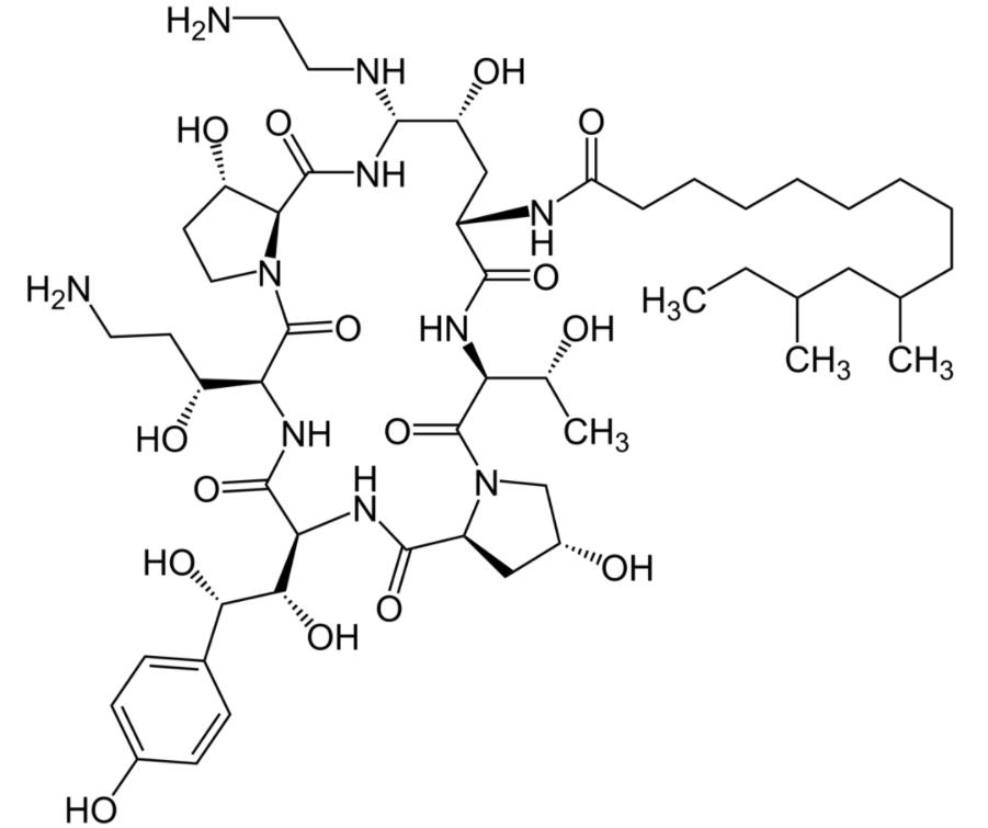 Chemical structure of caspofungin echinocandins
