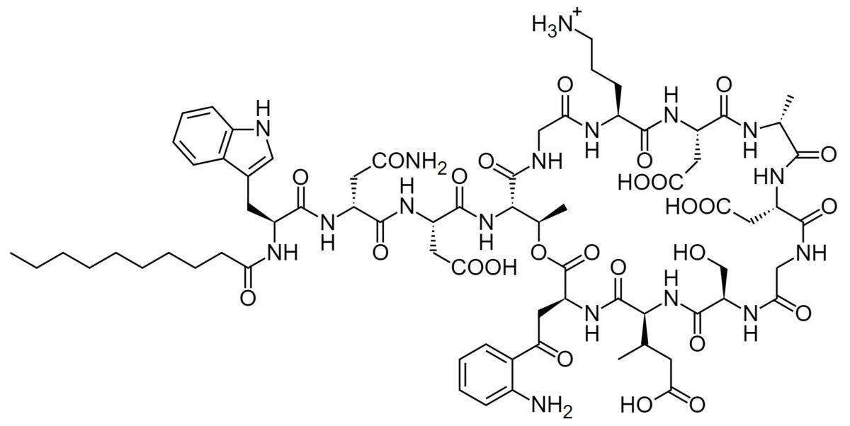 Chemical structure of daptomycin
