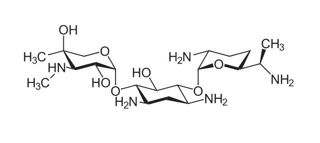 Chemical structure of gentamicin