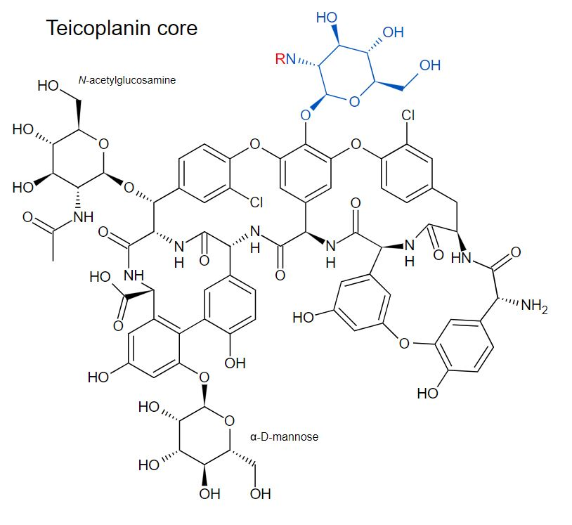 Chemical structure of teicoplanin