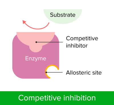Competitive inhibition