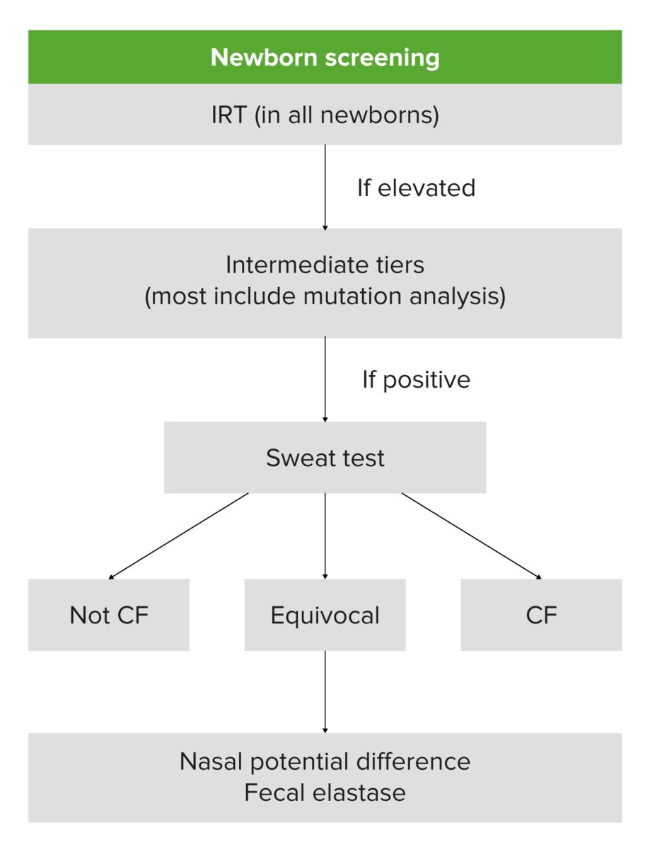 Cystic fibrosis testing algorithm