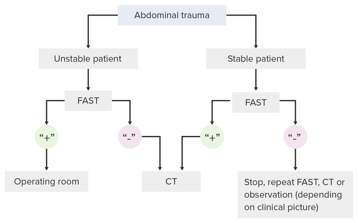 Decision making pathway for use of the FAST