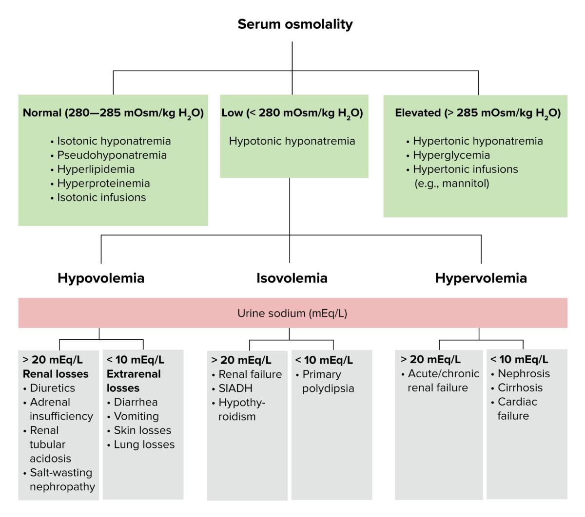 Diagnostic algorithm for volemic and sodium alterations