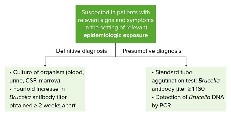 Diagnostic algorithm of brucellosis