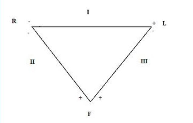 Einthoven Dreieck