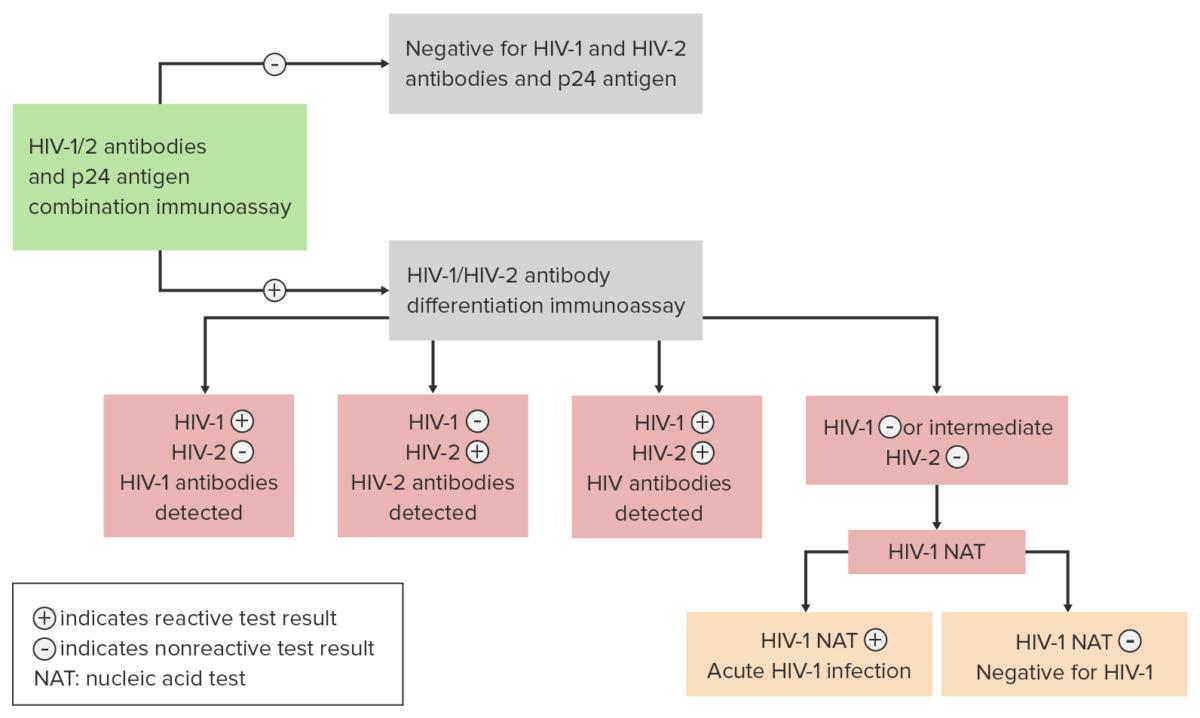 Flowchart enveloped RNA viruses