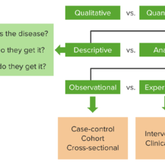 General Categories of Population Research Design