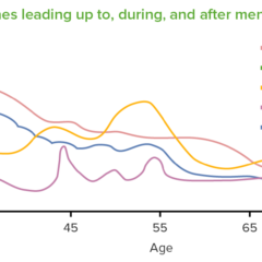 Hormones leading up to, during, and after menopause