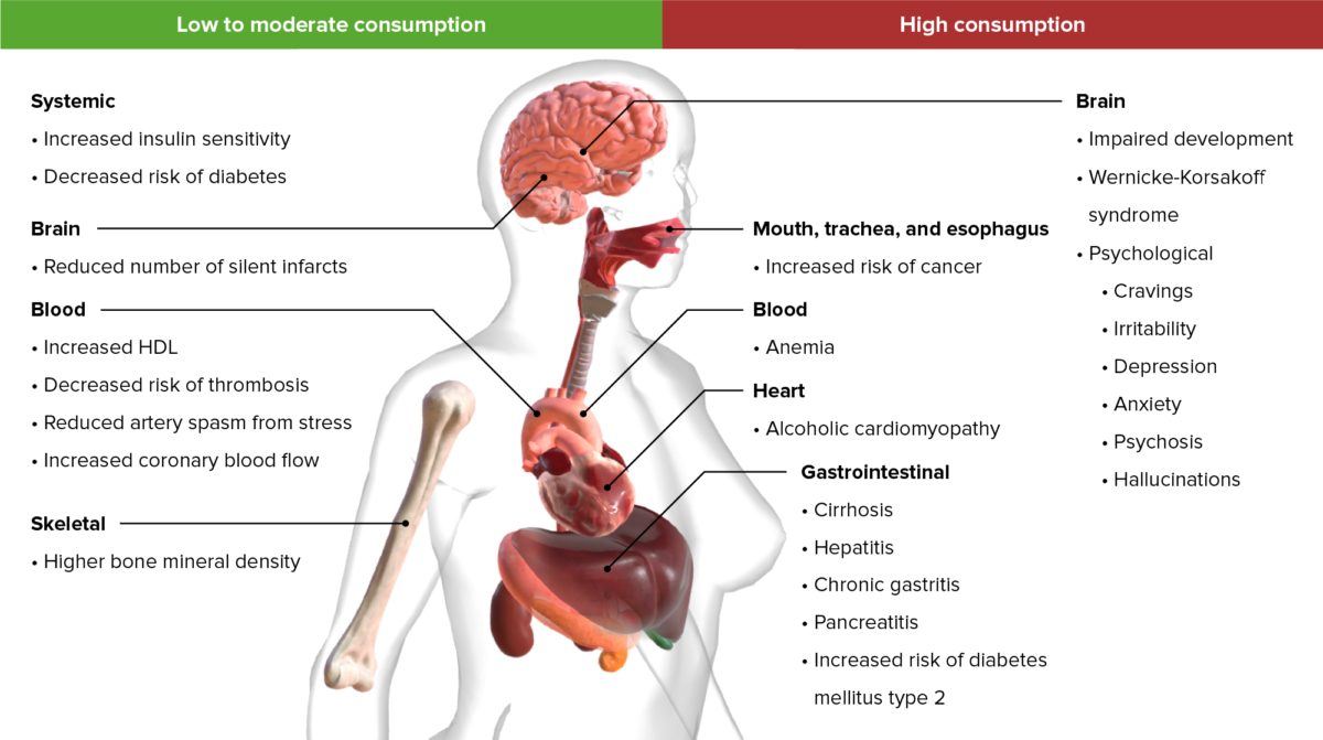 Long-term effects of ethanol consumption