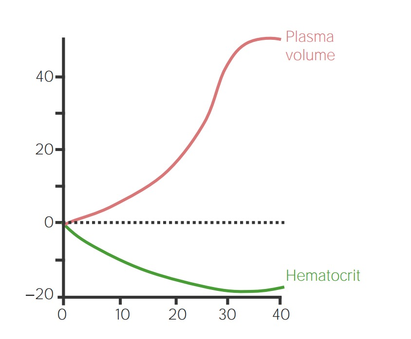 Maternal changes in cardiovascular system - plasma volume and hematocrit