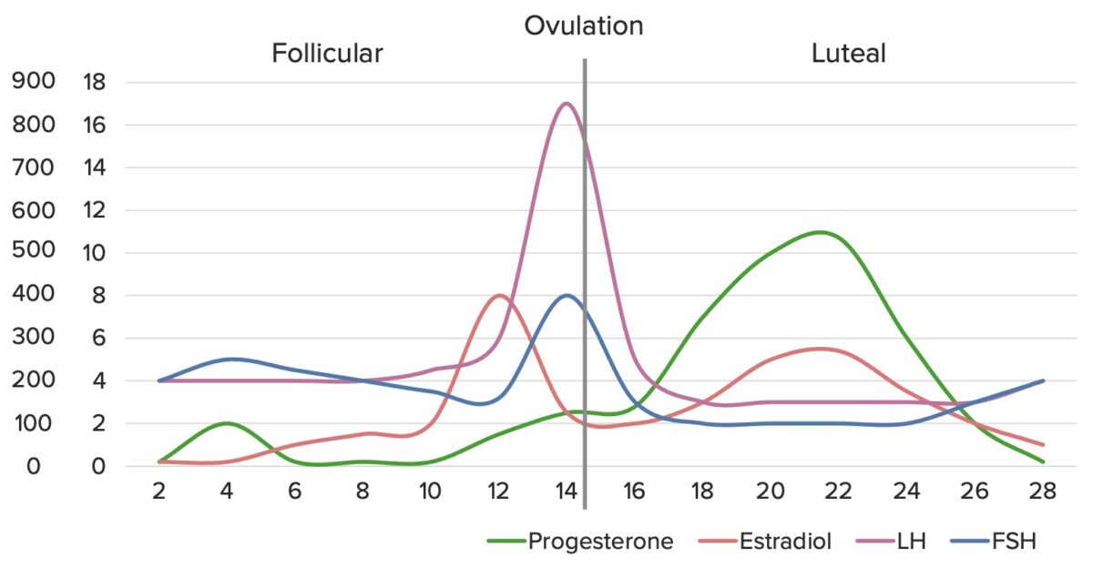 Normal hormonal fluctuations throughout the menstrual cycle