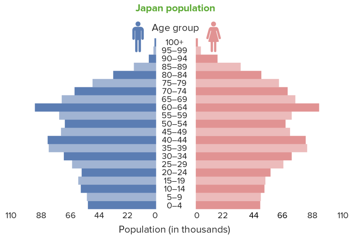 Population pyramids Japan