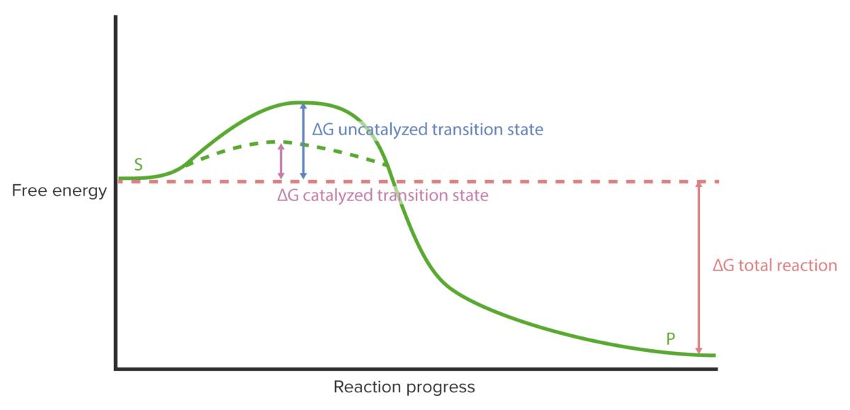 Reaction progress curve