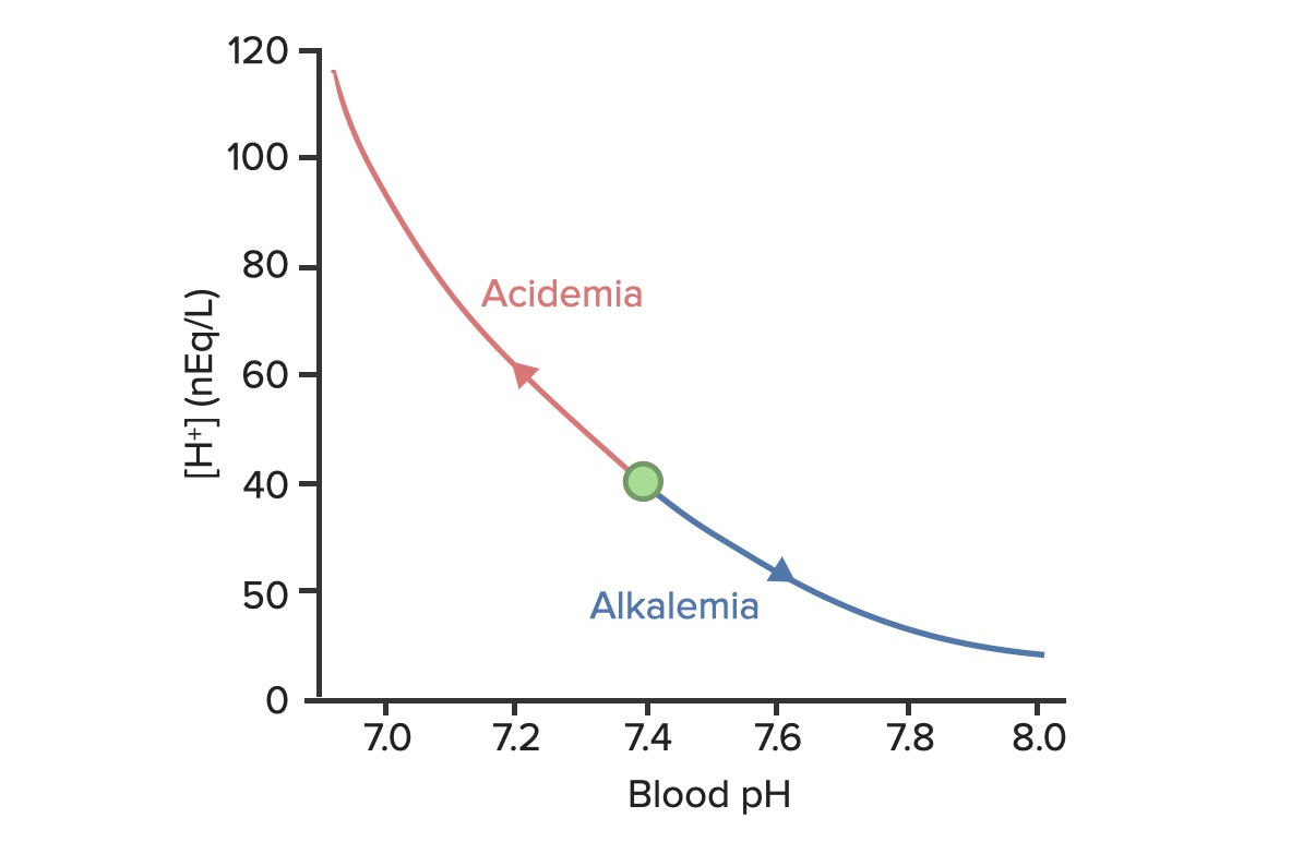 Relation between blood pH and concentration of hydrogen ions