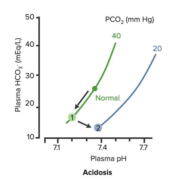 Respiratory compensation of metabolic acidosis