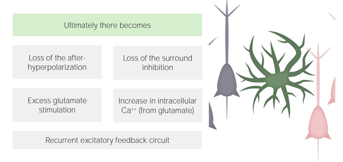Step 3 failure of inhibition in pathophysiology of seizures