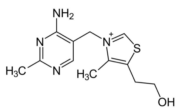 Structure of thiamine
