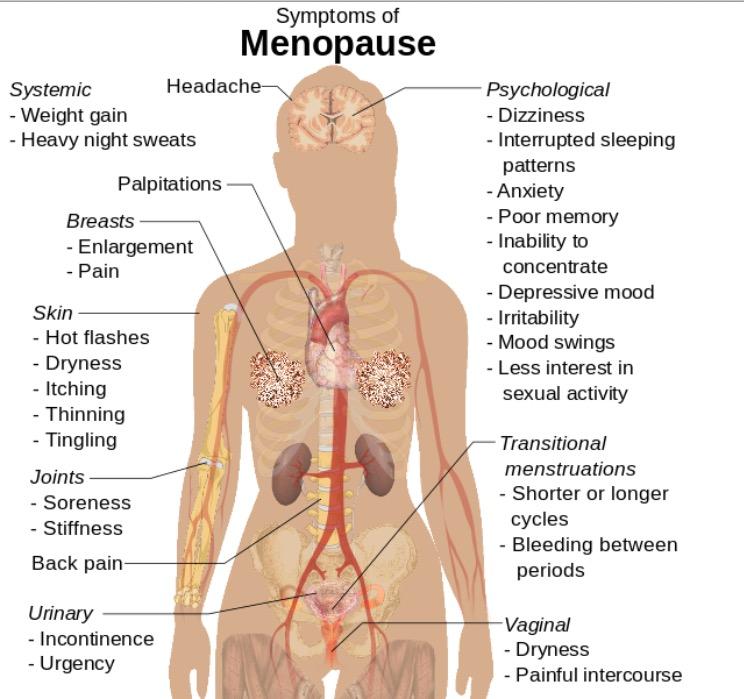 Symptoms of menopause