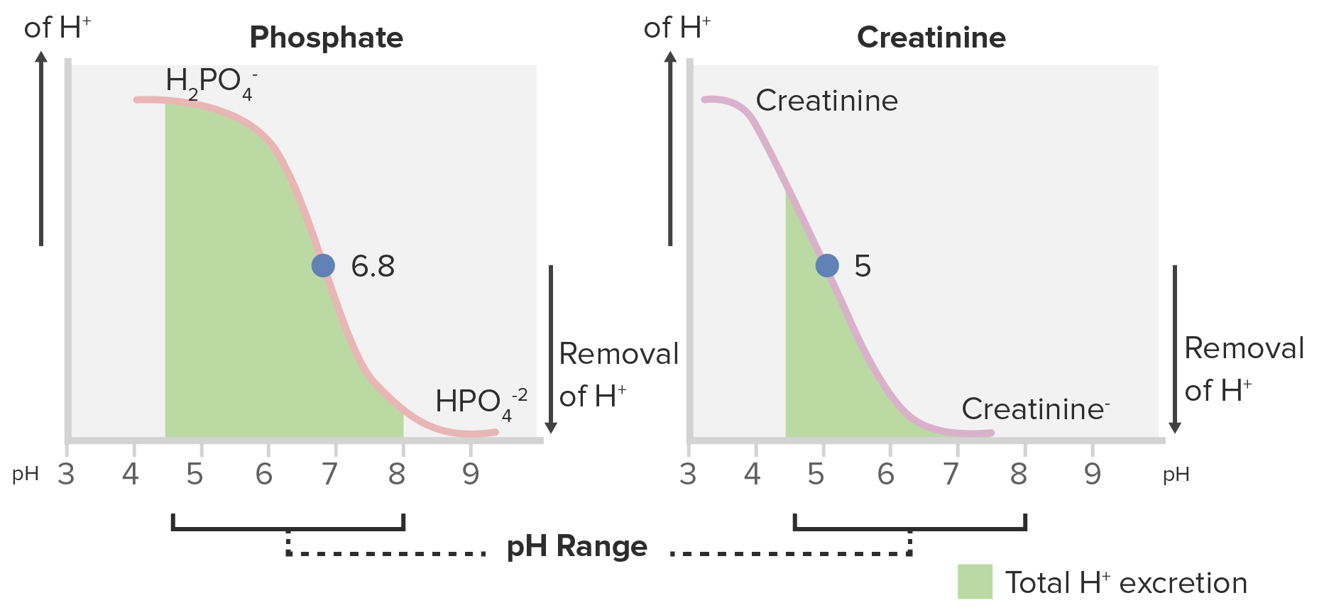 Titration curves for phosphate and creatinine