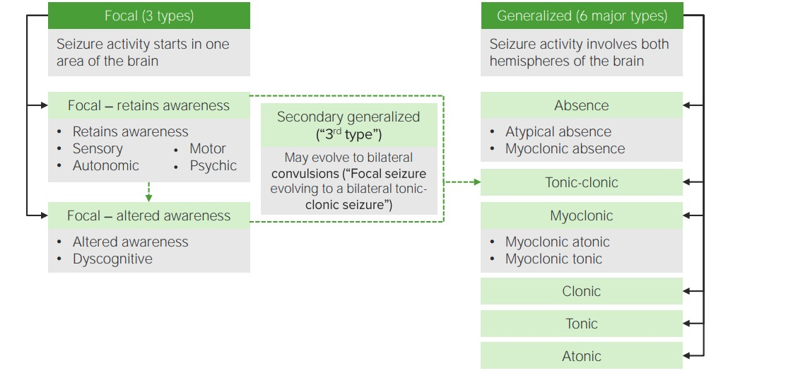Types of seizures and classifications
