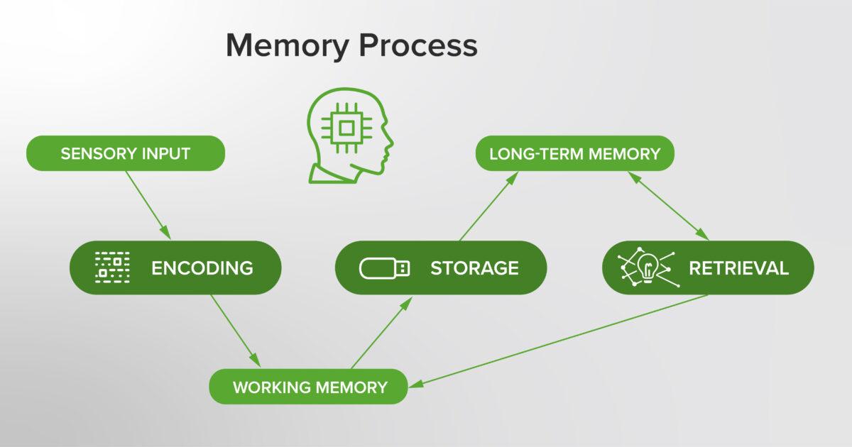 Memory process visual