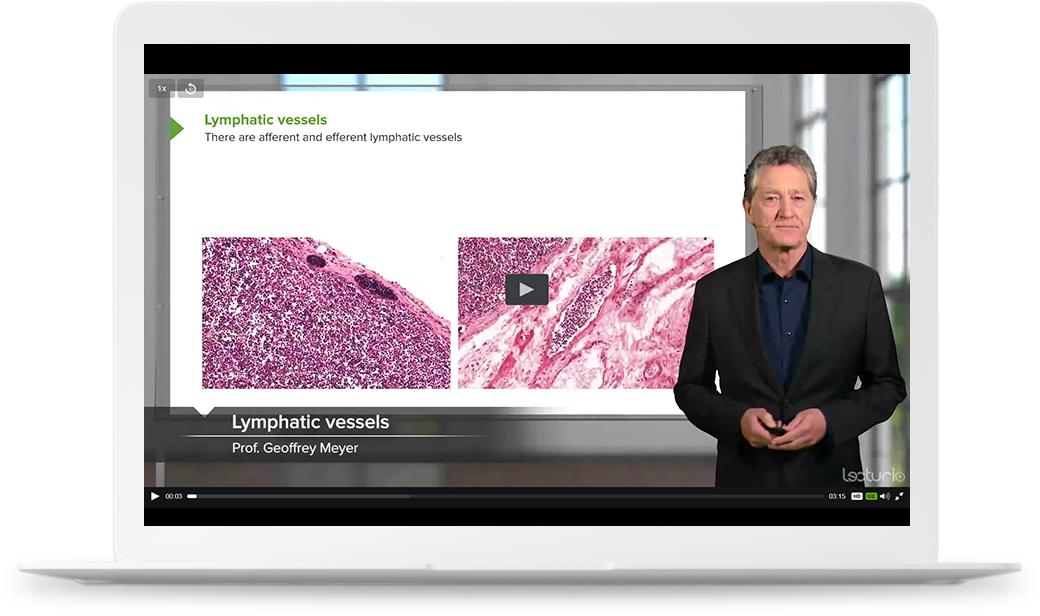 USMLE Medical Videos